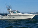 Lake Michigan Salmon Charter Originator Fishing Charter